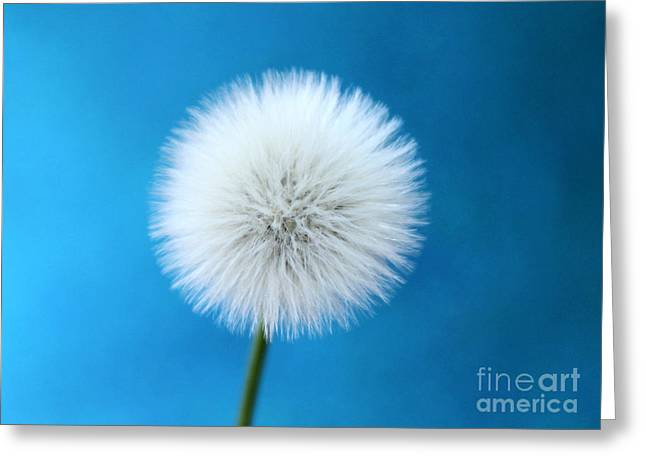 Wish In Blue Greeting Card by Krissy Katsimbras