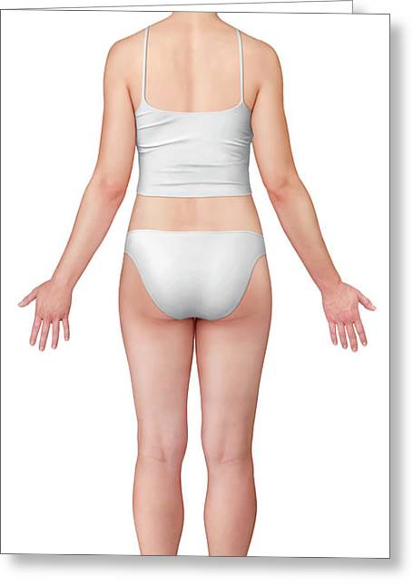 Woman Posterior View Greeting Card by Qa International, Universal Images Group/science Photo Library