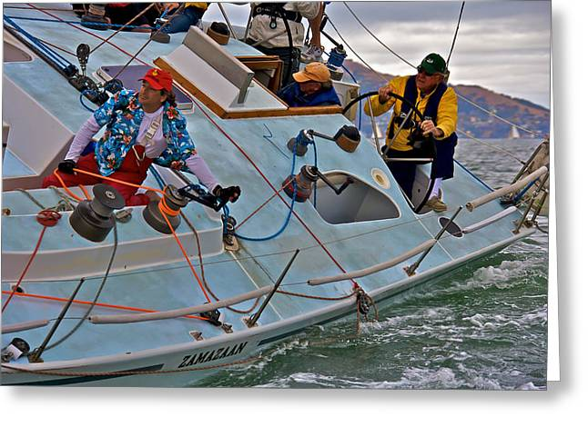 San Francisco Sailing Greeting Card by Steven Lapkin