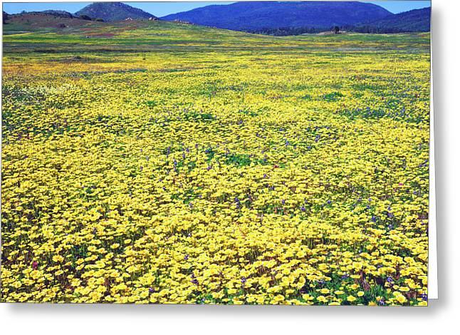Usa, California, Cuyamaca Rancho State Greeting Card by Jaynes Gallery