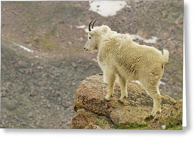 Usa, Colorado, Mount Evans Greeting Card by Jaynes Gallery