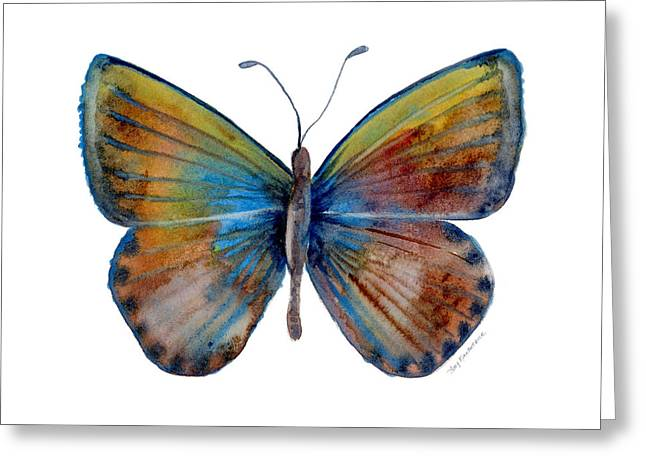 22 Clue Butterfly Greeting Card