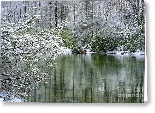 Winter Along Williams River Greeting Card