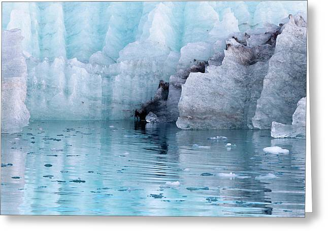 Usa, Alaska, Glacier Bay National Park Greeting Card