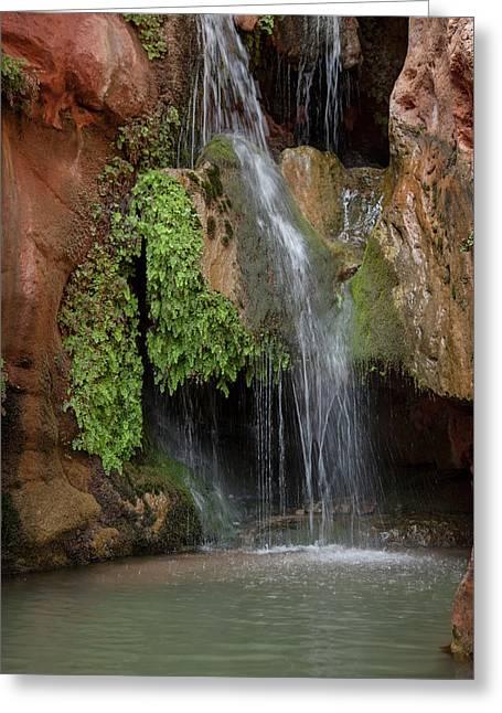 Usa, Arizona, Grand Canyon National Park Greeting Card by Jaynes Gallery