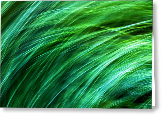 Meditations On Movement In Nature Greeting Card