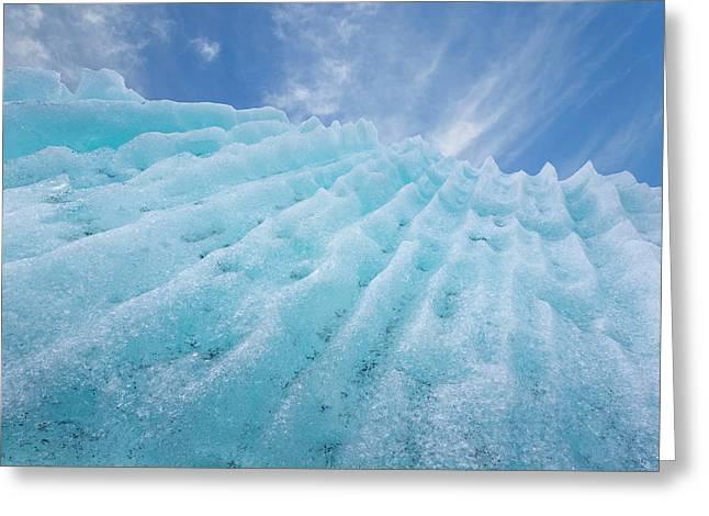 Usa, Alaska, Glacier Bay National Park Greeting Card by Jaynes Gallery