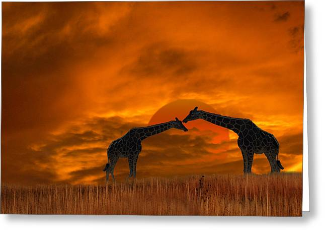 2978 Greeting Card by Peter Holme III