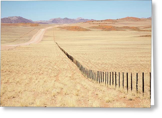Africa, Namibia, Namib Desert Greeting Card by Jaynes Gallery