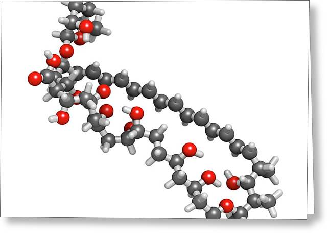 Amphotericin B Antifungal Drug Molecule Greeting Card by Molekuul