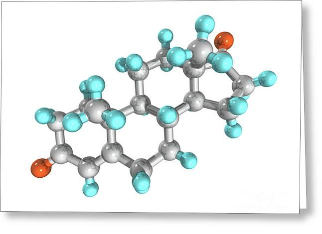 Androstenedione Hormone Molecule Greeting Card by Laguna Design