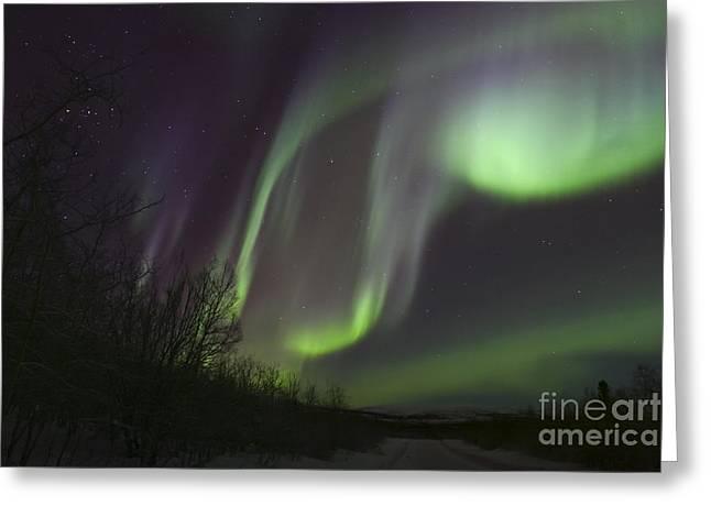 Aurora Borealis By Fish Lake Greeting Card by Joseph Bradley