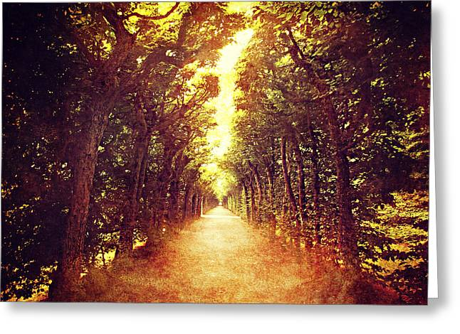 Avenue Trees Greeting Card by Heike Hultsch