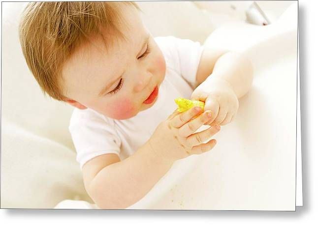 Baby Boy Eating A Crisp Greeting Card by Ruth Jenkinson/science Photo Library