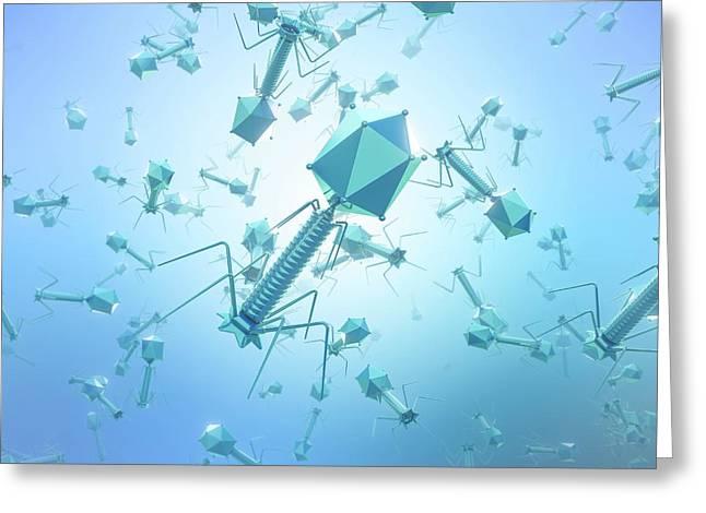 Bacteriophage T4 Viruses Greeting Card