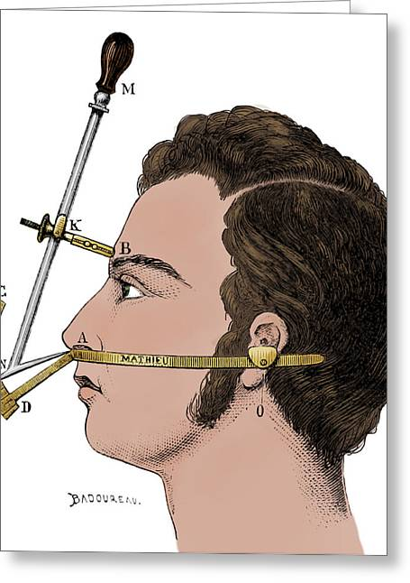 Bertillons Anthropometry, 1883 Greeting Card by British Library