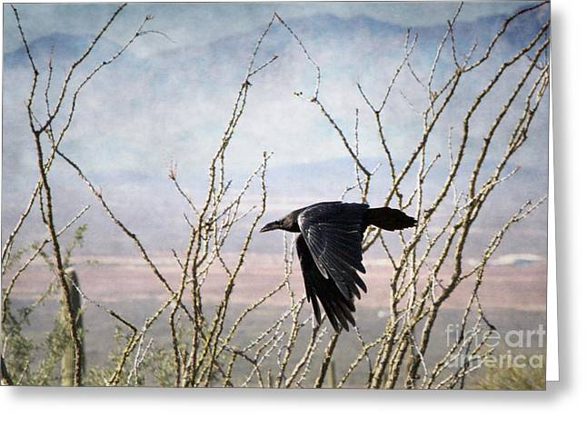 Common Raven Greeting Card by Marianne Jensen
