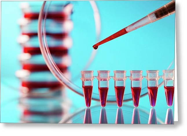 Blood Testing Greeting Card by Wladimir Bulgar