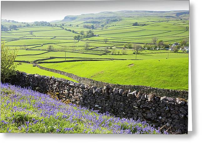 Bluebells Growing On A Limestone Hill Greeting Card by Ashley Cooper