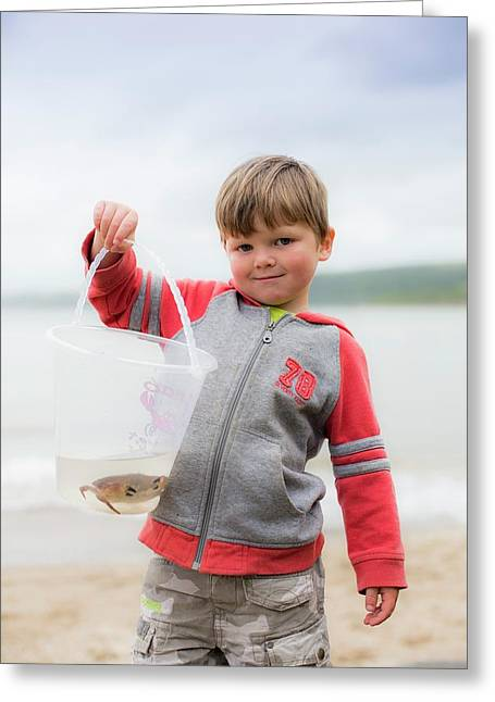 Boy Holding Crab Greeting Card