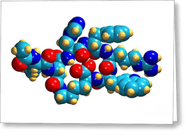 Bremelanotide Drug Molecule Greeting Card by Dr. Mark J. Winter