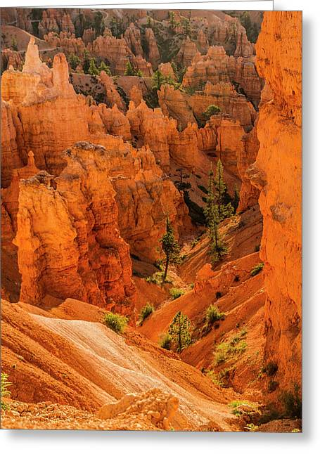 Bryce Canyon National Park, Utah Greeting Card