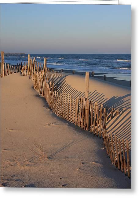 Cape Hatteras Dunes  Greeting Card by Mountains to the Sea Photo