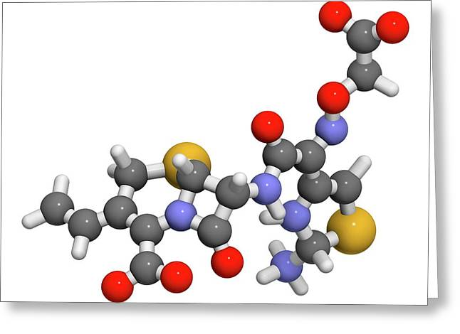 Cefixime Antibiotic Drug Molecule Greeting Card by Molekuul