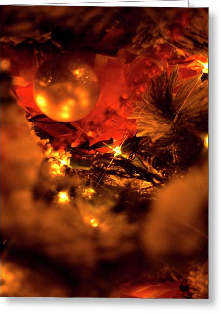 Christmas Greeting Card by Terry Thomas