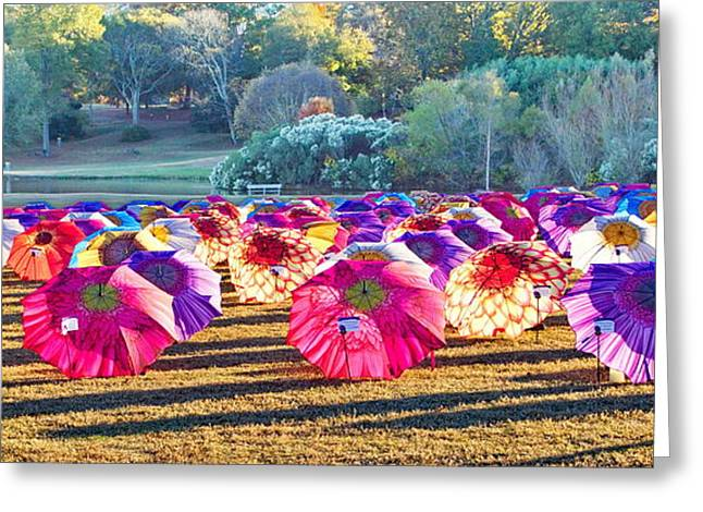 Colorful Umbrellas At The Park Greeting Card
