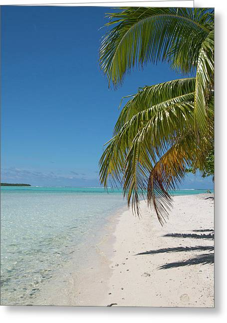 Cook Islands Palmerston Island Greeting Card by Cindy Miller Hopkins