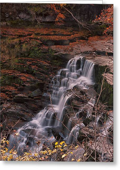Corra Linn Greeting Card