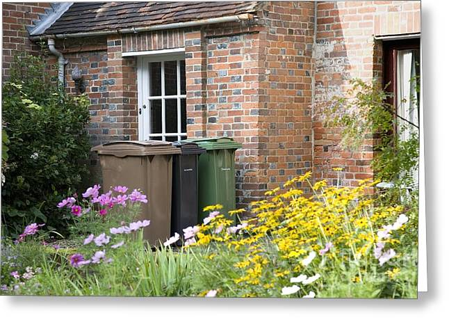 Domestic Waste Collection Bins Greeting Card by Sheila Terry