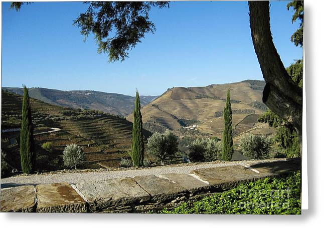 Greeting Card featuring the photograph Douro River Valley by Arlene Carmel