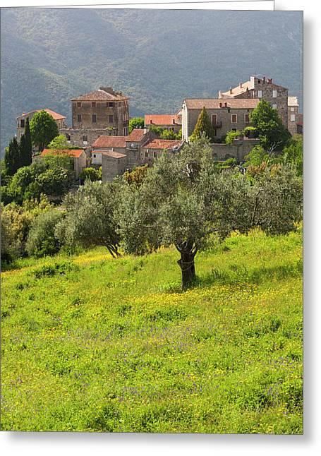 France, Corsica, La Alta Rocca Greeting Card by Walter Bibikow