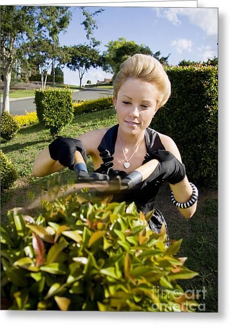 Gardener Greeting Card by Jorgo Photography - Wall Art Gallery