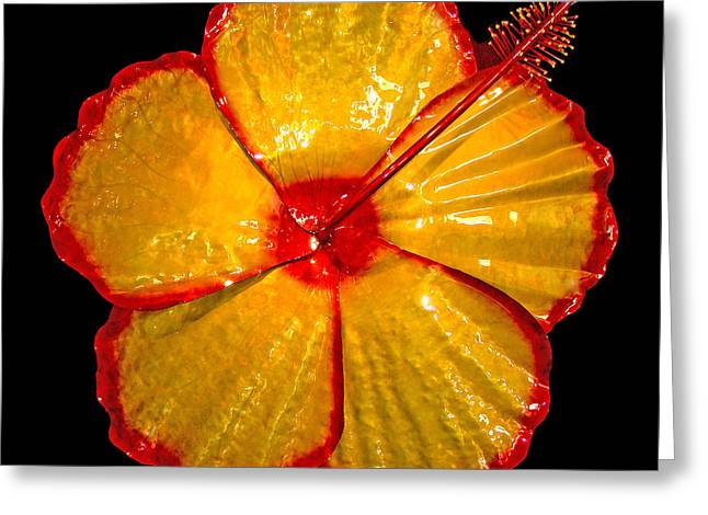 Giant Hibiscus Greeting Card by Diane Snider