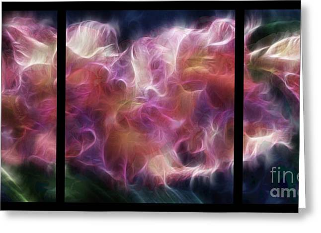 Gladiola Nebula Triptych Greeting Card by Peter Piatt