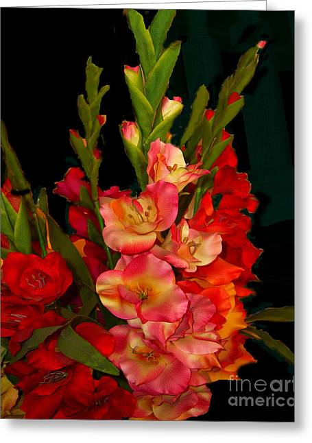 Greeting Card featuring the photograph Gladiolus by Merton Allen