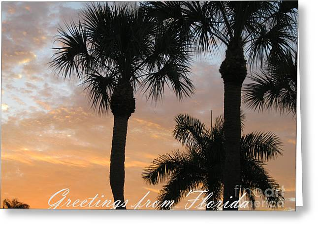 Greetings From Florida Greeting Card by Oksana Semenchenko