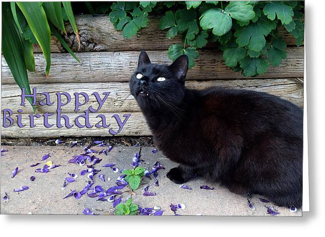 Happy Birthday Greeting Card by Michele Wright