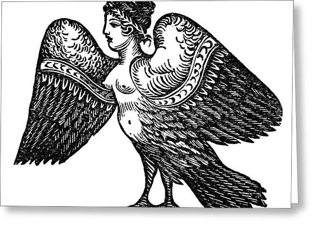 Harpy, Legendary Creature Greeting Card by Photo Researchers