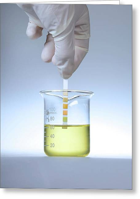 Home Urine Test Greeting Card by Cordelia Molloy