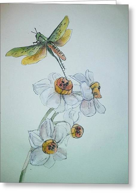Insects That Crawl And Fly Album Greeting Card by Debbi Saccomanno Chan
