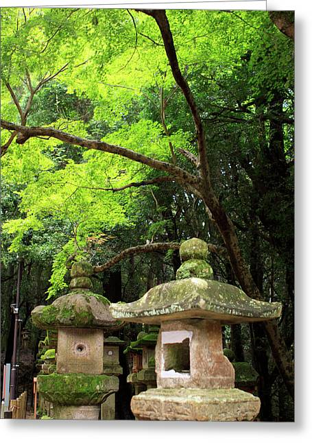 Kasuga-taisha Shrine In Nara, Japan Greeting Card