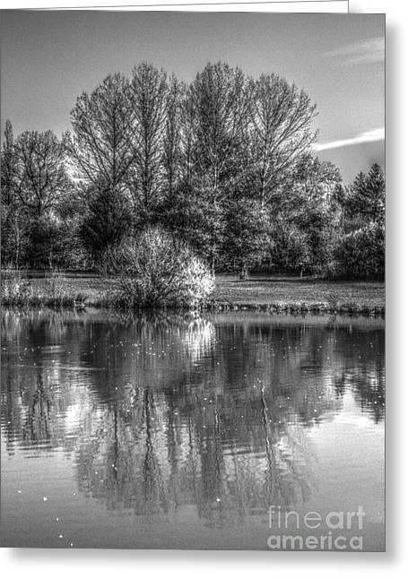 Greeting Card featuring the photograph Lake Reflections by Jeremy Hayden