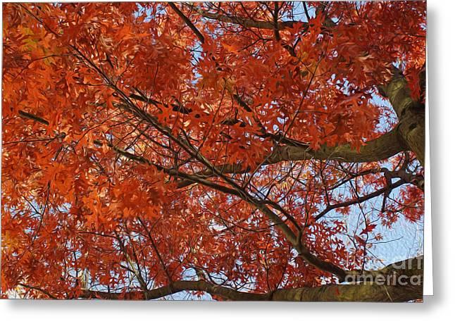 Leaves Greeting Card by Nur Roy