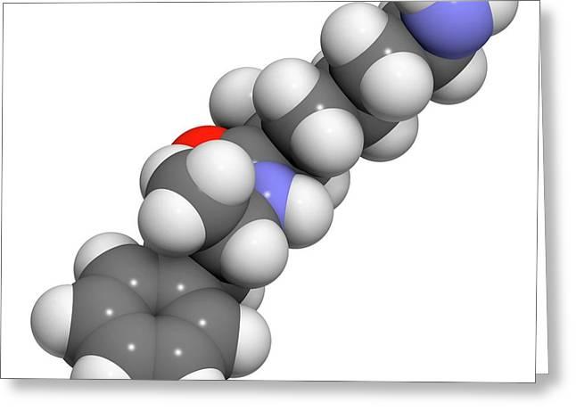 Lisdexamfetamine Mesylate Adhd Drug Greeting Card