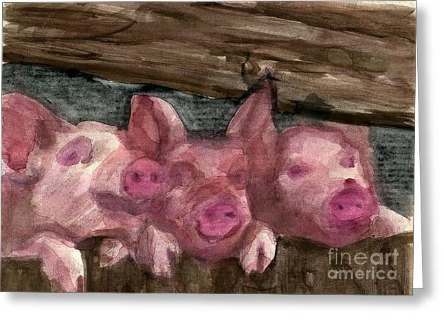 3 Little Pigs Greeting Card by Sandra Stone