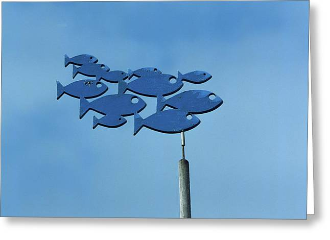 Low Angle View Of Weather Vane Greeting Card